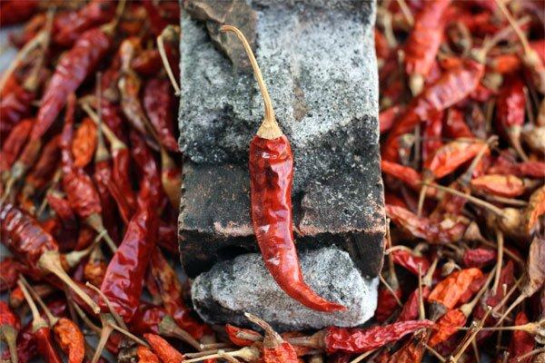 El chile Cayenne y sus beneficios